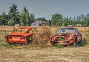Rusty Opels