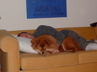 Ken and Q, napping together. I can't get enough of these photos. The sign behind them was created by my sister-in-law to welcome be back from wintry Chicago.