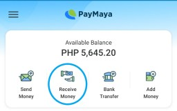 home screen of PayMaya virtual wallet