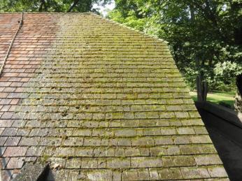 Moss covered cedar shake shingles