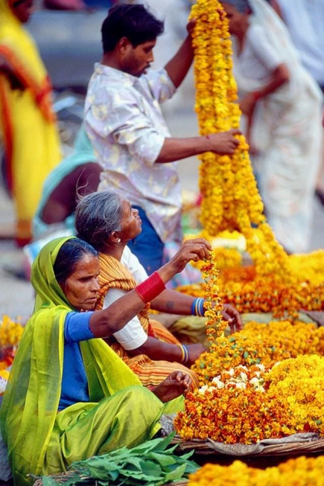 India_Kerala_province_rooftopantics_travelblog_travelconsultant1