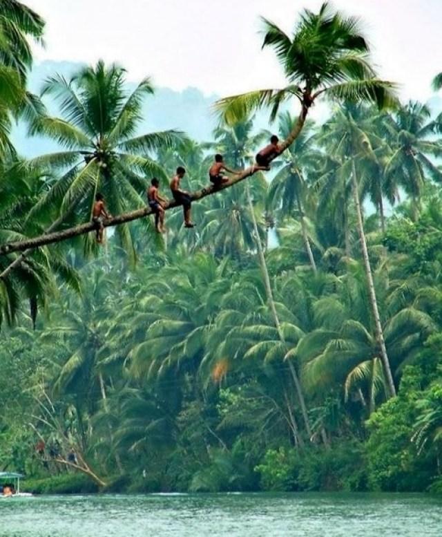 Kerala_province_rooftopantics_travelblog_travelconsultant3