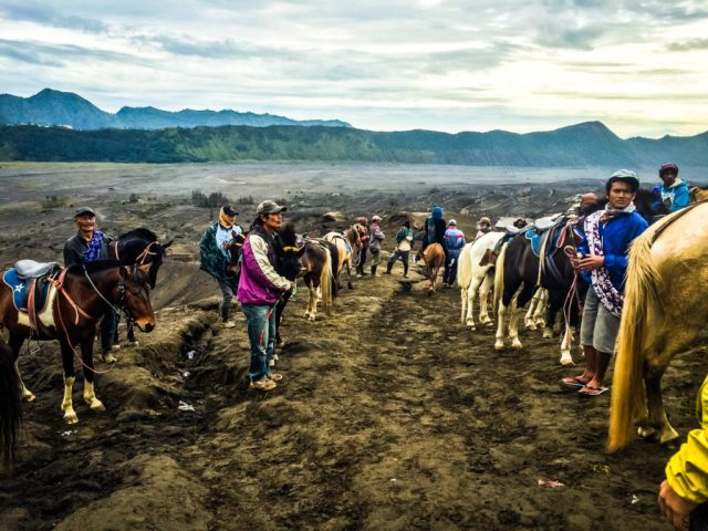 Mount_bromo_Ijen_No_tour_indonesia_java (10 of 19)