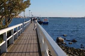 Ein Steg an der Ostseeküste Helsinkis.