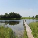 Einsamer See in Litauen – Diese Ruhe!