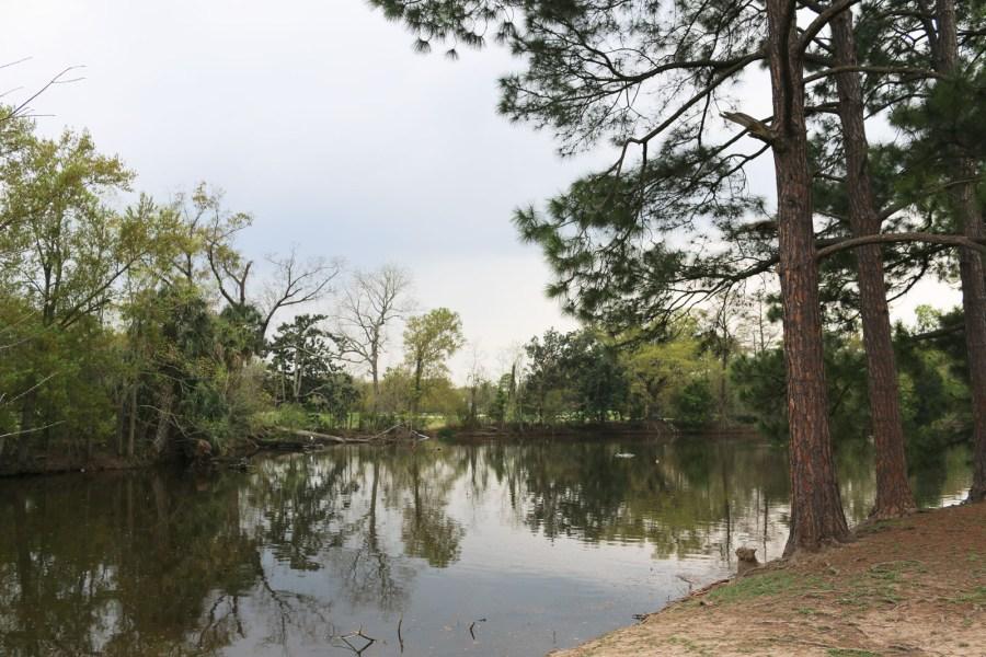 New Orleans ist voll von Park wie dem Audubon Park im Garden District.