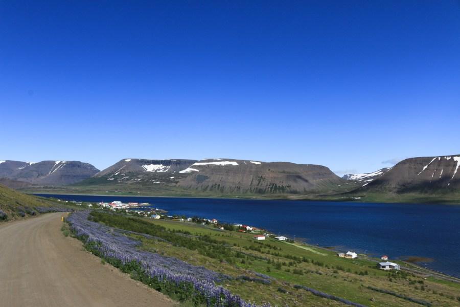 Þingeyri (gesprochen Thingeri) liegt malerisch am Dyrafjörður.