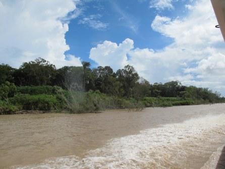 Der Fluss ist breiter als jede Autobahn.