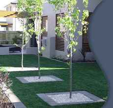 25 beautiful front yard landscaping ideas on a budget (15)