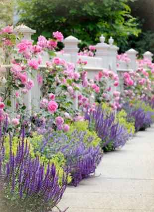 50 diy flower garden ideas in front of house (9)