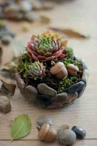 120 easy to try diy polymer clay fairy garden ideas (13)