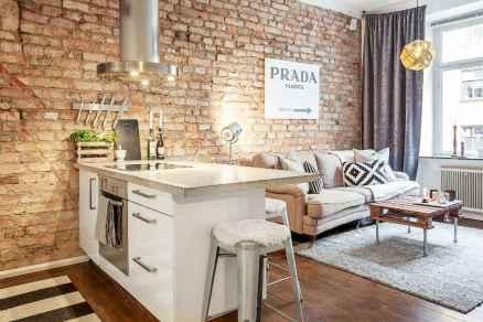 80 smart solution small apartment living room decor ideas (36)