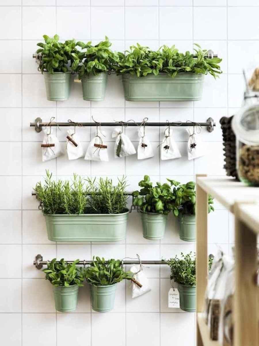 60 easy to try herb garden indoor ideas (52)