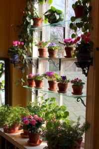 60 easy to try herb garden indoor ideas (56)