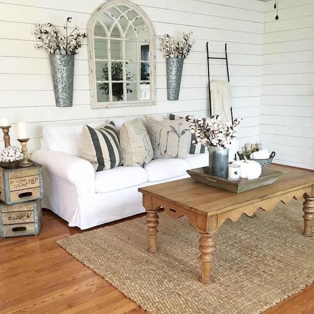 66 Best Farmhouse Living Room Remodel Ideas (17