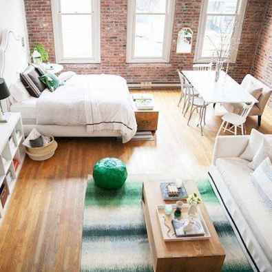 77 amazing small studio apartment decor ideas (12)