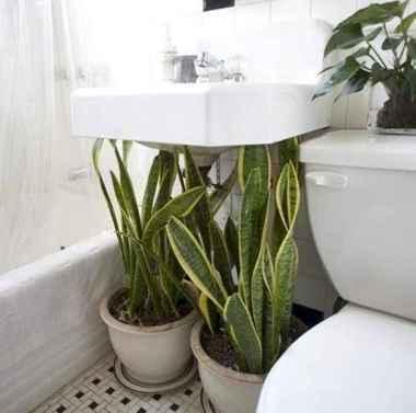 80 brilliant apartment garden indoor decor ideas (29)