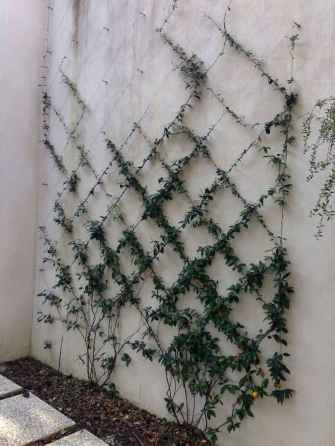 30 fantastic vertical garden indoor decor ideas (6)