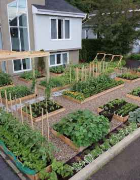 35 stunning vegetable backyard for garden ideas (2)
