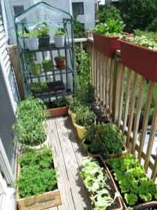 35 stunning vegetable backyard for garden ideas (27)