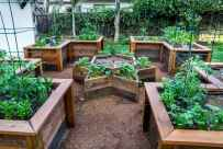 35 stunning vegetable backyard for garden ideas (35)