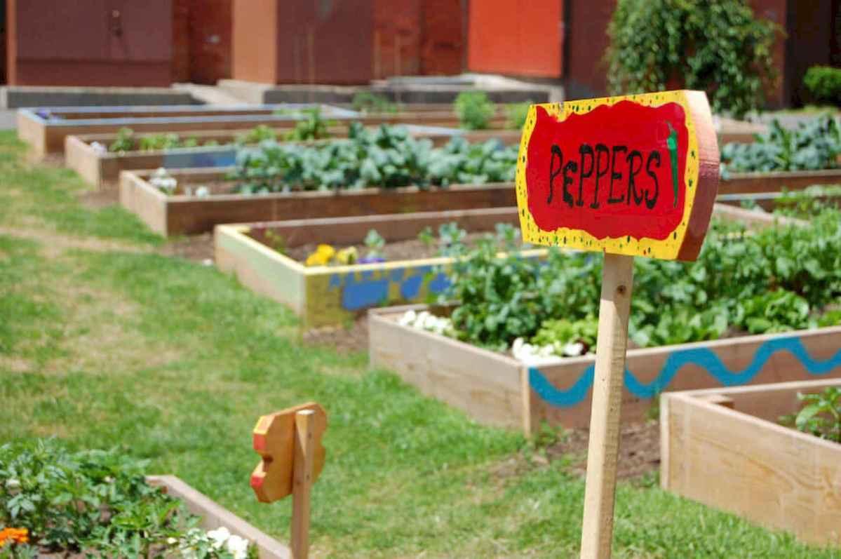 35 stunning vegetable backyard for garden ideas (9)