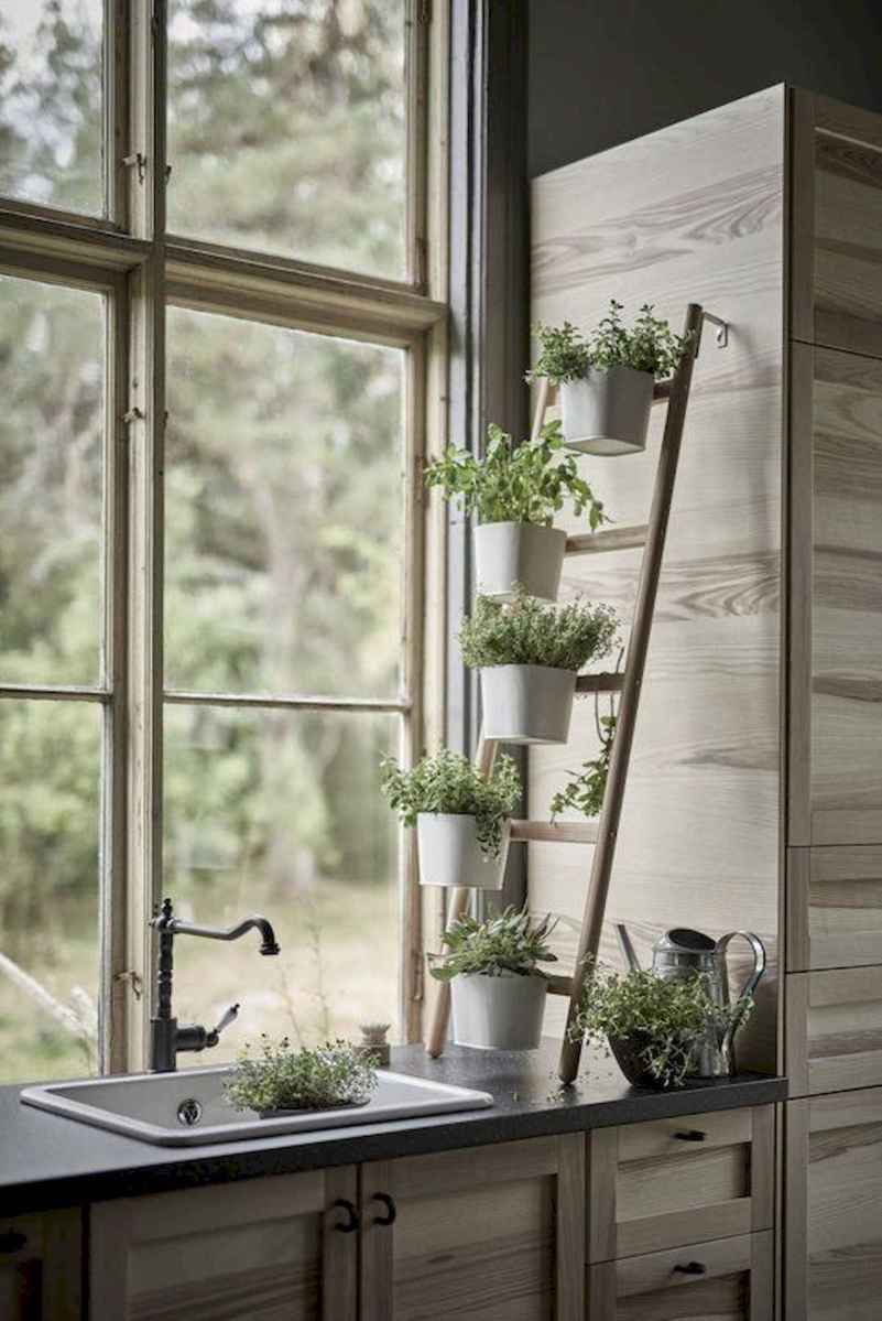 50 unique and creative ladder in the garden design ideas and remodel (7)