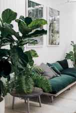 55 greeny indoor plants ideas that will purify your room's air (17)