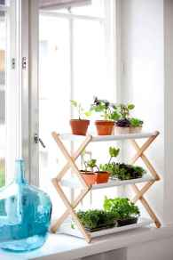 55 greeny indoor plants ideas that will purify your room's air (45)