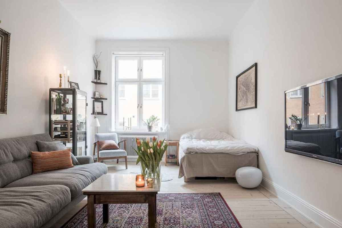 Best small apartment living room layout ideas (29)