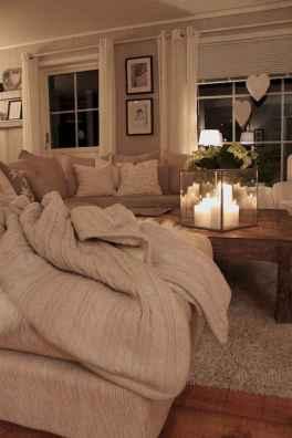 Cozy living room design & decorating ideas (66)