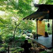 Incredible wood backyard pavilion design ideas outdoor (19)