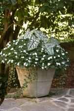 Best summer container garden ideas 1