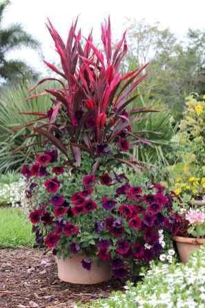 Best summer container garden ideas 12