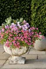 Best summer container garden ideas 23