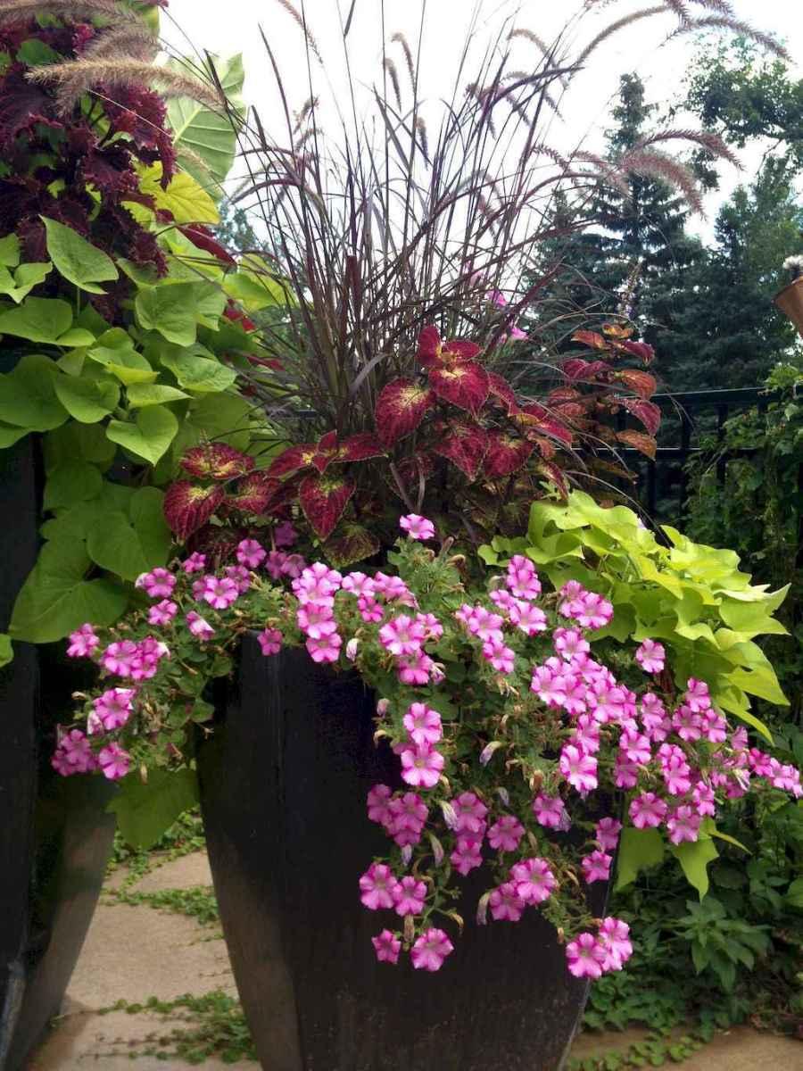 Best Summer Container Garden Ideas 55 Room A Holic