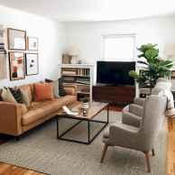 Cozy midcentury living room 10 ideas