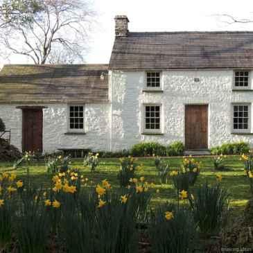 Gorgeous cottage house exterior design ideas012