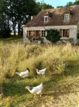 Gorgeous cottage house exterior design ideas050