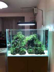 Relaxing aquascaping ideas for inspiration 34