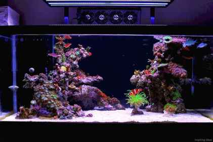 Relaxing aquascaping ideas for inspiration 35