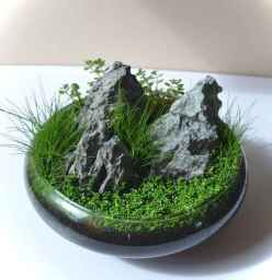 Relaxing aquascaping ideas for inspiration 40