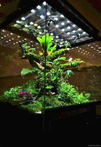 Relaxing aquascaping ideas for inspiration 7