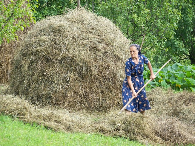 agricultrice