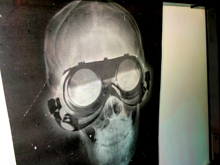 In-game: An x-ray print of a sull wearing goggles.