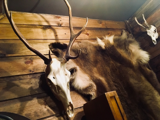 In-game: Animal skills and pelts mounted to the wooden walls of a cabin.