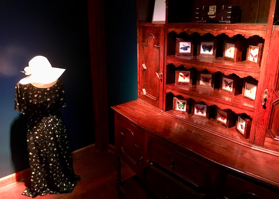 In-game: A beautiful antique with many drawers, cabinets, and 3 shelves covered in preserved butterflies.