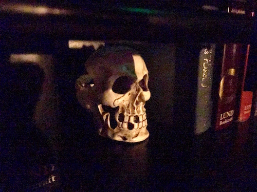 In-game: a dimly lit bookshelf with a skull and books resting on it.