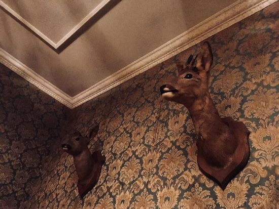 In-game: Two mounted deer heads on a wall, above is a heavily detailed ceiling.