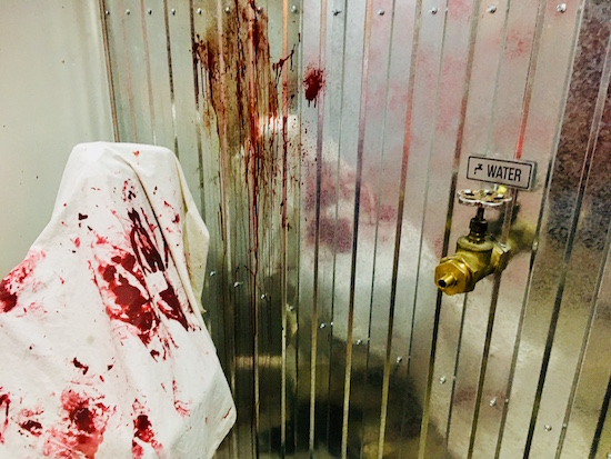 In-game: A blood-soaked sheet beside a steel wall with blood and a water spigot.